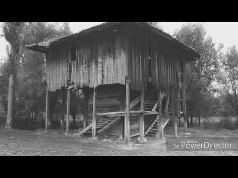 Olgaç Yurtsever - Açış