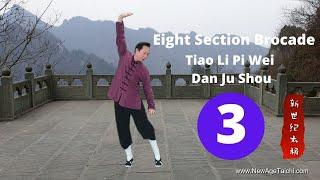Ba Duan Jin 03 (Eight Section Brocade): Tiao Li Pi Wei Dan Ju Shou