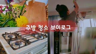 가스레인지 기름 때 / 냉장고 손 얼룩 / 집 청소 브…