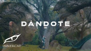 Video Dandote (Remix) Sartiboy