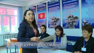 видео процедура голосования