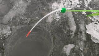 КРУПНЫЕ КАРАСИ гнут КИВКИ Зимняя рыбалка на мормышку