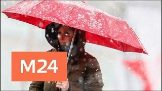 Снег будет идти всю следующую неделю – синоптики - Москва 24