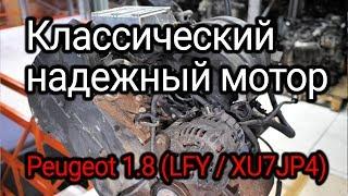 """Надежный """"француз"""" с """"мокрыми"""" гильзами. Веселая разборка классического двигателя (LFY / XU7JP4)."""