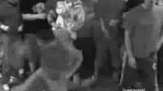 cdc crowd war sanctuary mosh video