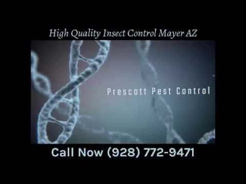High Quality Insect Control Mayer AZ