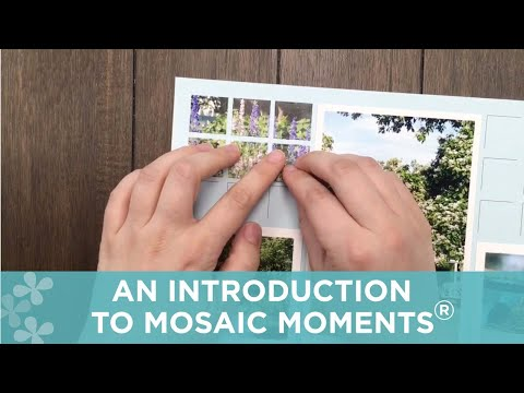 An Introduction to Mosaic Moments