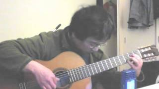 Happiness Is A Warm Gun (Fingerstyle Guitar)