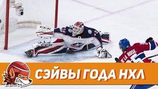 топ-10 сэйвов НХЛ сезона 2017-18