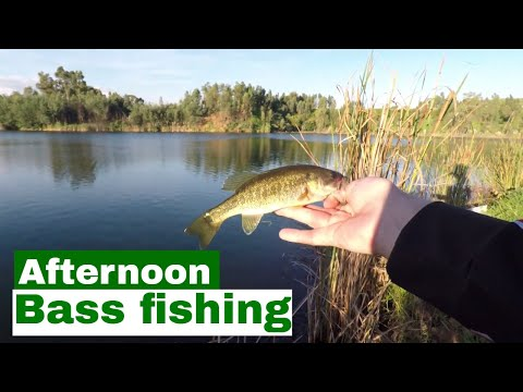 Late Afternoon Bass Fishing Session At Th Quarry