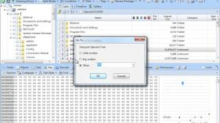 MFT Tutorials - Analyse the header, name attribute and standard information attribute in MFT