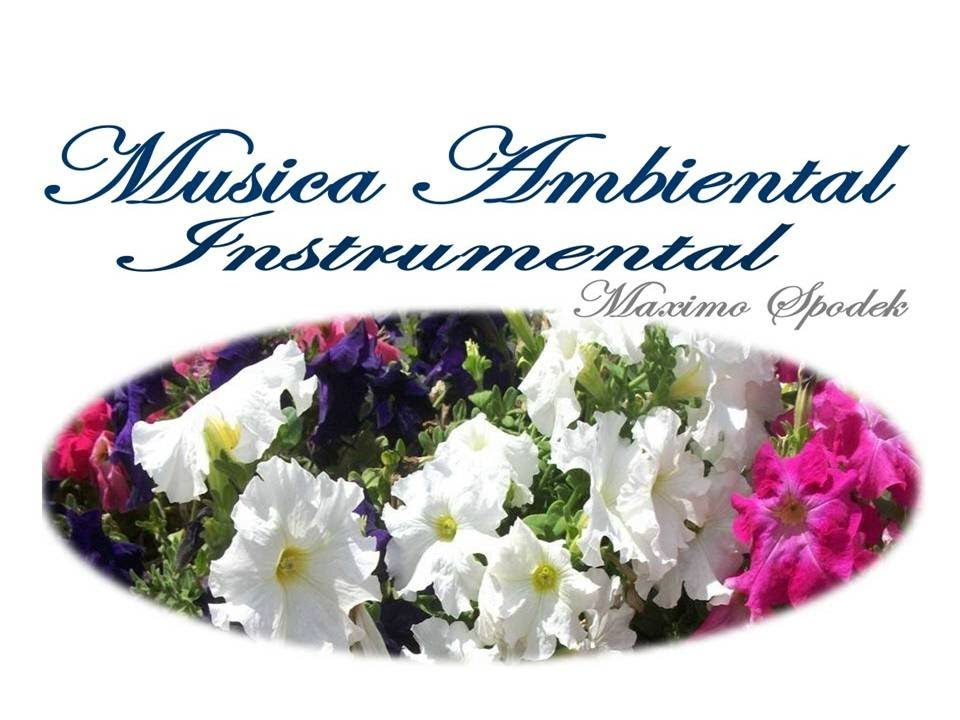 La Mejor Musica Ambiental Suave Y Agradable Oficinas Consultorios Etc Piano Instrumental Boleros Youtube