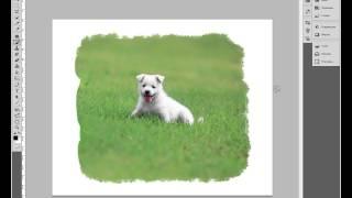 Урок #3. Обработка фотографии, креативная рамочка в Adobe Photoshop CS5 (Видео урок).(Привет, уважаемые подписчики, любители программы Photoshop! Прошу прощения за звук только в левом динамике...., 2014-10-19T19:50:41.000Z)
