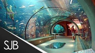 Malta National Aquarium, Glass Tunnel - Malta 2014