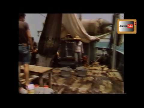 Kuwait A Dream Suspended - A Rare Documentary Film about Kuwait in the 80s