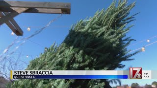 How the Great Recession could affect your Christmas tree this year
