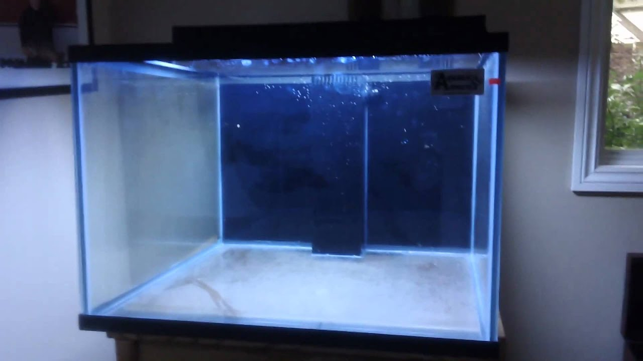 My new 150 gallon cube aquarium youtube for Square fish tank