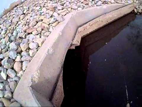 Albuquerque's Urban Fishing For Large Mouth Bass