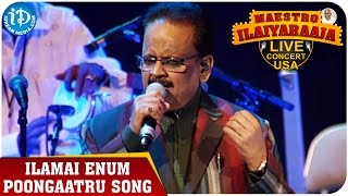Maestro Ilaiyaraaja Live Concert - Ilamai Enum Poongaatru Song - SP Balasubrahmanyam
