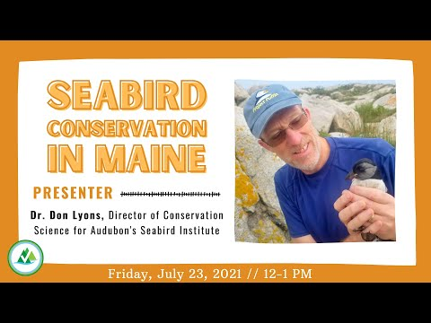 Lunch & Learn: Seabird Conservation in Maine