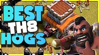 How To 3 Star Town Hall 8 with These Hog Attacks | Clash of Clans