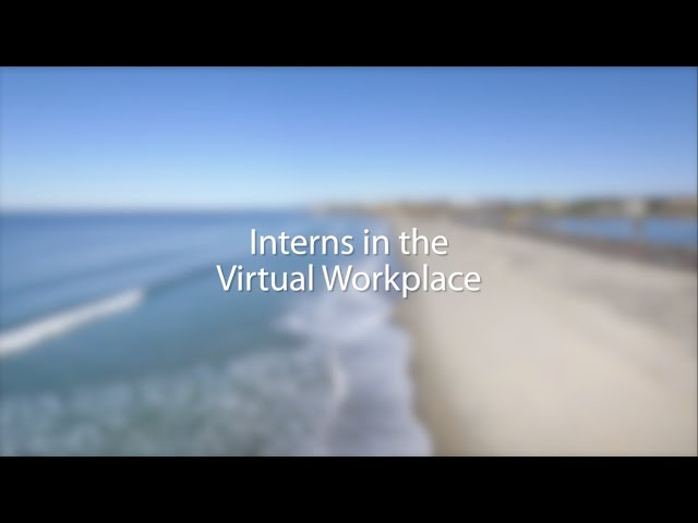 Virtual interns, a huge benefit to your team!