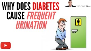 ■Why Does Diabetes Cause Frequent Urination - by Dr Sam Robbins