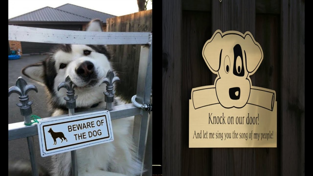Funny Beware Of The Dog Signs And The Very Dangerous Dogs Behind