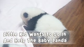 Little Kid Wants To Go In And Help The Baby Panda | iPanda