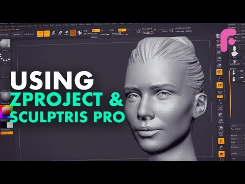Optimize Your Sculpting with ZProject and Sculptris Pro