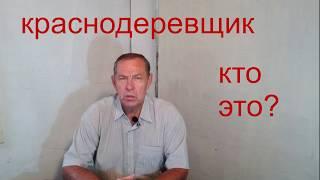 Столяр- краснодеревщик