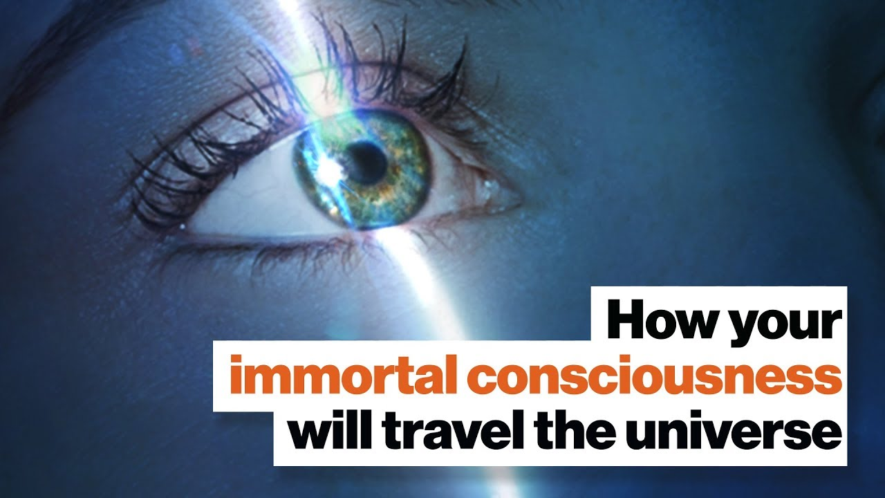 Download How your immortal consciousness will travel the universe | Michio Kaku | Big Think