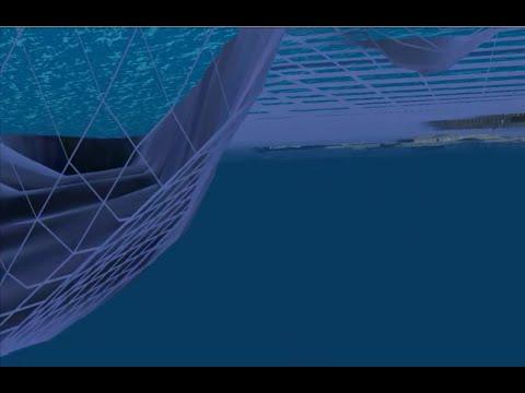 Ocean Floor Mysteries