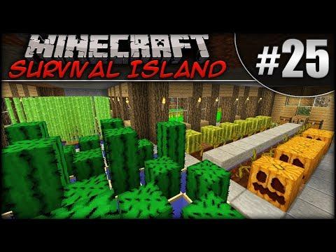 Minecraft: Survival Island - Episode 25 - Farm Upgrade & Wither Rematch!