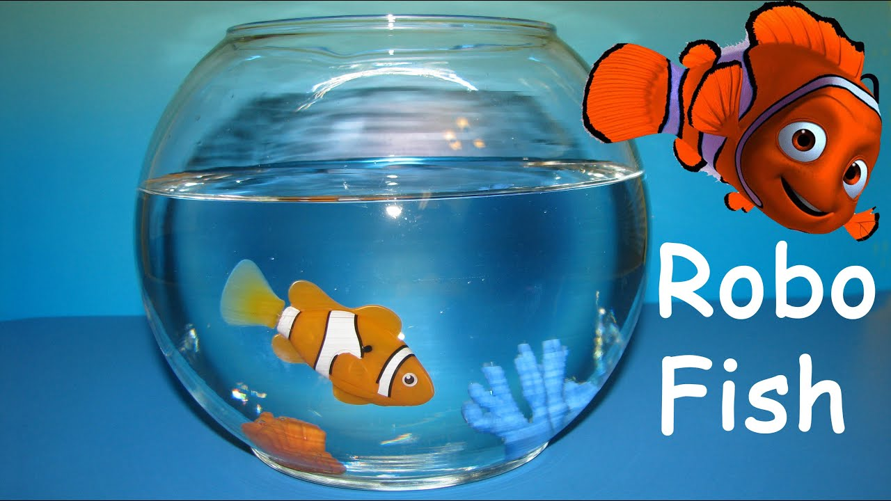 Robo fish clownfish like nemo robofish zuru awesome toy for Zuru robo fish