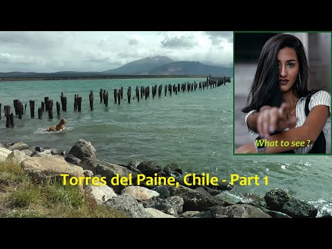 (HD) Torres del Paine (Chile) - Part 1 : From Punta Arenas to Puerto Natales