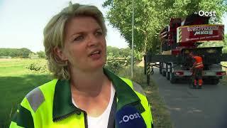 Levensgevaarlijke bomen gekapt aan de Schellerenkweg Zwolle