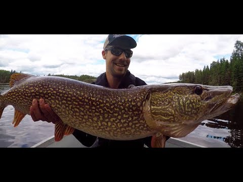 Ultimate Do-It-Yourself Fly-In Fishing - Jackson's Lodge & Outposts