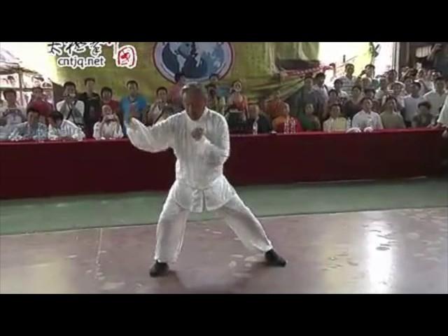 Chen Boxiang  - Tai Chi style Chen Xiaojia 2012 [陈氏太极拳小架 Taijiquan style Chen Xiaojia]