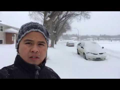 SNOW STORM  (REGINA SASKATCHEWAN)