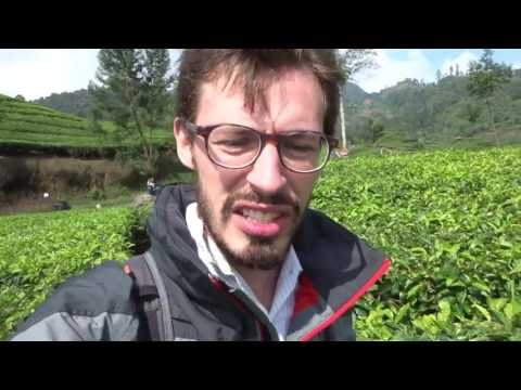 Travel video #28 - Indonesia, around Bandung it's cold, it's hot and there's tea