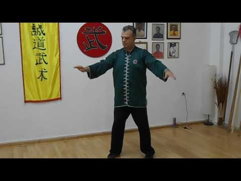 Tai Chi Chuan for Multiple Sclerosis by  Master Bill Drougas