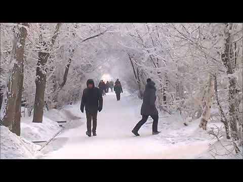 2019-12-24 Энергетик, белая зима, −23° C, Братск, Сибирь, Россия