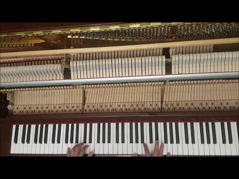 Pachelbel Canon in D Piano Version by Özgün Özerk
