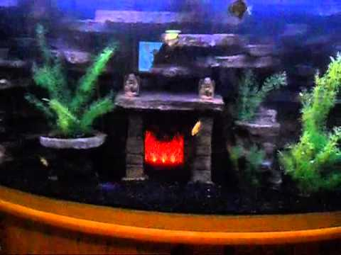 Diy 3d Aquarium Background Updated Video Youtube
