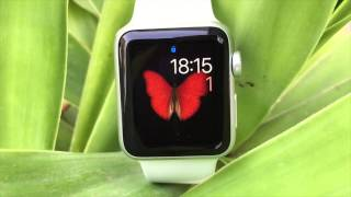 Apple Watch Butterfly Watch Face Animation