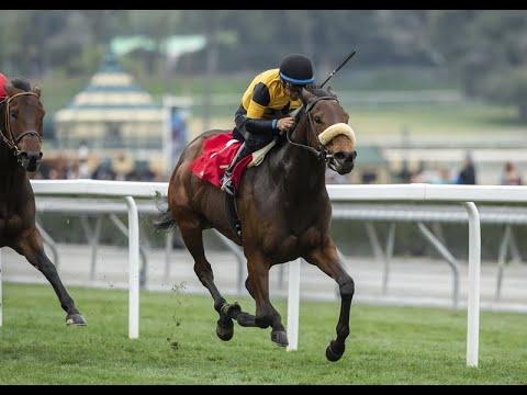 Carressa Wins Grade 3 Megahertz Stakes at Santa Anita, 1-20-20