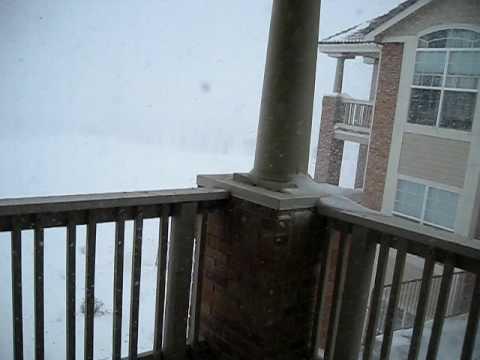 Colorado Blizzard 2009 , Superior CO