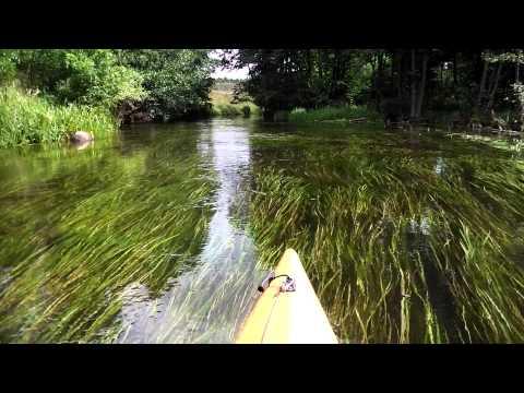 Spływ kajakowy rzeka Wda 2013