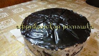 Торт африканская ромашка.